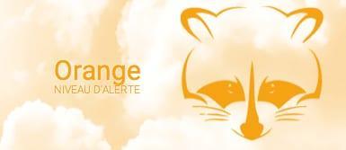12-10-15-brume-sable-orange