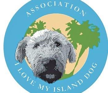 20121119-20-11-12-I-LOve-My-Island-Dog