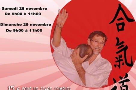 27-11-15-aikido