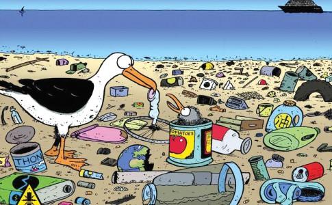 14-04-16-oiseau-dechet-plage