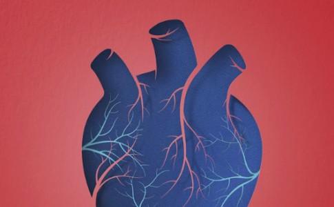 30-06-16-don-organe
