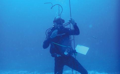 28-07-16-plongeur