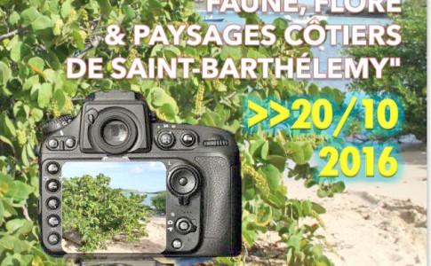 07-10-16-concours-photo