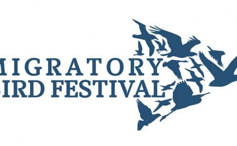12-10-16-festival-oiseaux