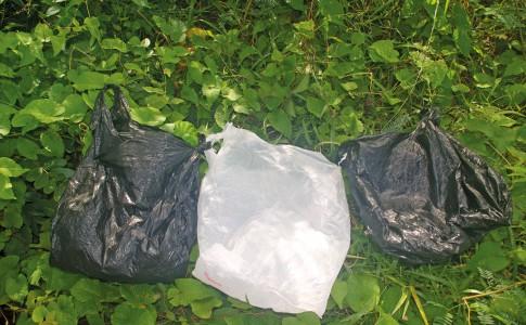 04-01-17-les-sacs-plastiques-nuisent-a-lenvironnement