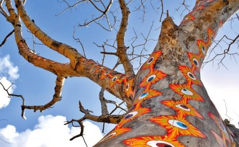 13-03-17-arbres-decores