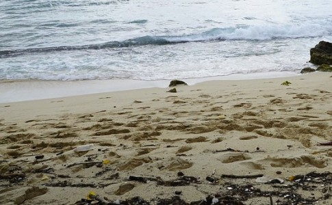 12-04-17-plage_pollution
