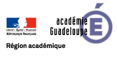 logo_web_guadeloupe_bleu_0