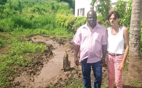 07-11-17-Hercule-et-Béatrice-ont-subi-plusieurs-attaques-de-cochons-tout-près-de-leur-domicile